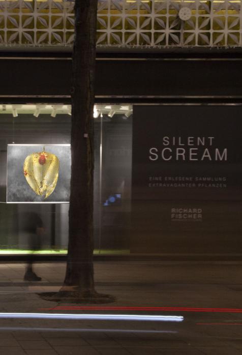 SILENT SCREAM | Richard Fischer | BURN-IN Auslage Mariahilfer Straße 42-48